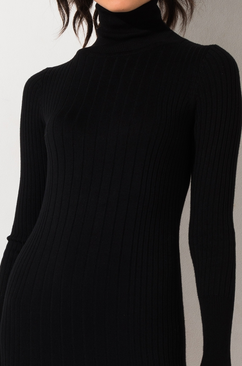 PAXTON Label Ribbed Knit Bodycon Turtleneck Mini Dress in Ivory, Black