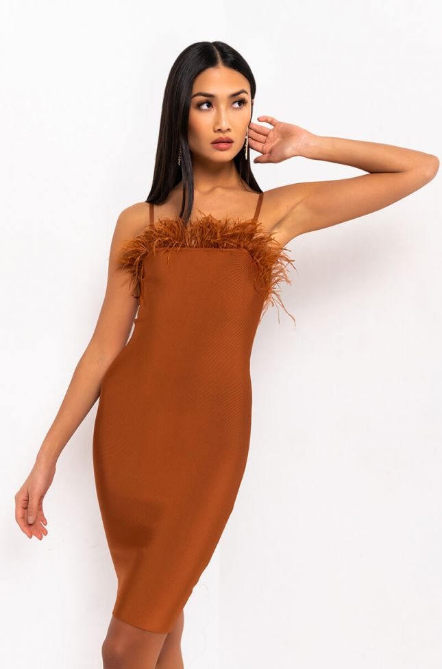 Front View Not Your Average Gal Bodycon Tube Dress With Feathers in Brown