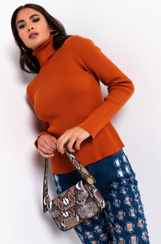 Front View Only The Best Long Sleeve Turtleneck Sweater in Rust