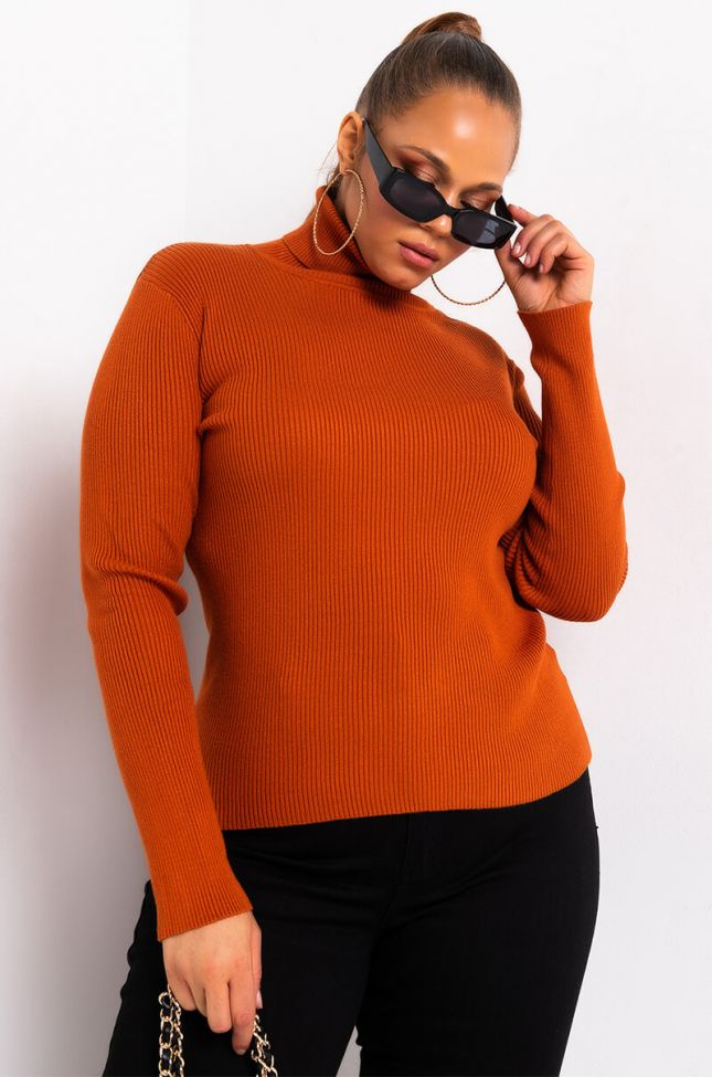 PLUS ONLY THE BEST LONG SLEEVE TURTLENECK SWEATER
